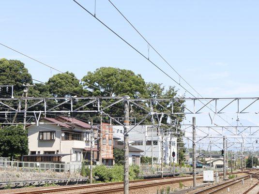 shizuoka23