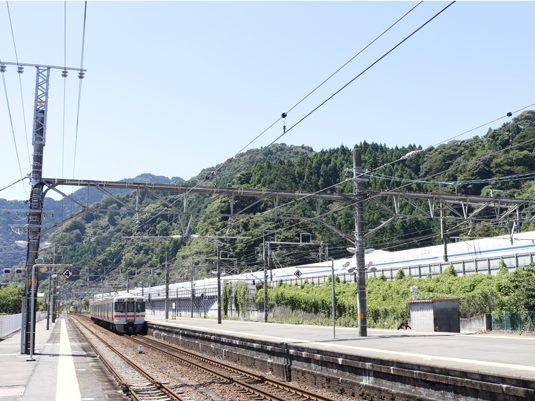 shizuoka19