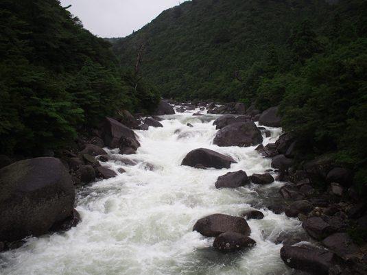 yakushima139