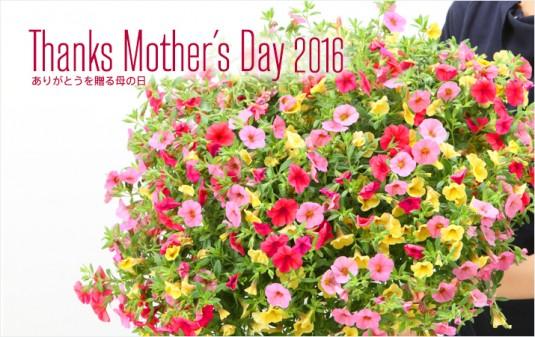 m_mothersday2016