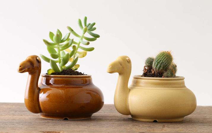 ラクダが癒しを運んでくれる植木鉢カバー