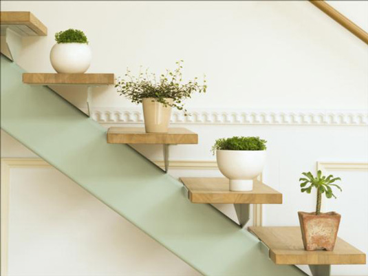green-house-plants-ideas-and-stairs