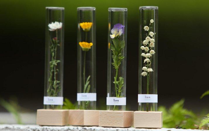野に咲く草花が、長く飾れるオブジェに