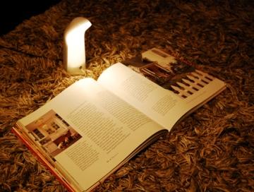 ベッドの中で心ゆくまで本を読む