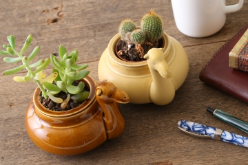 ラクダの植物鉢